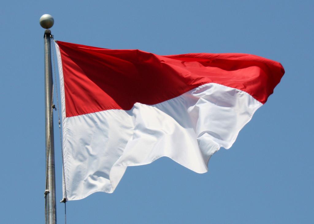 Indonesia Flag My Zozieman